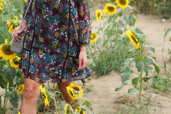 Fall Sunflowers & Loft Dress